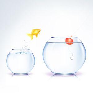 11231937 - conceptual fish temptation