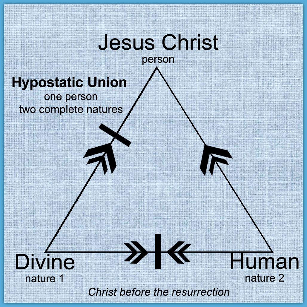 The Humanity ofJesus